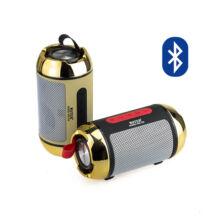 Bluetooth Hangszóró Kihangosító TF USB AUX FM WS-100