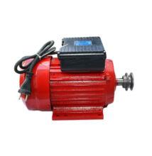 Haina villanymotor 2500W 220V-50Hz 1500/min V25-1500