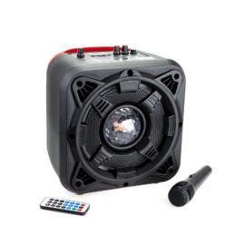 Bluetooth hordozható multimédia lejátszó karaoke mikrofonnal MP3 USB FM rádió TF ALP-813